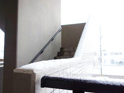 岡山市内で雪
