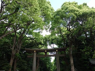 明治神宮&清正井