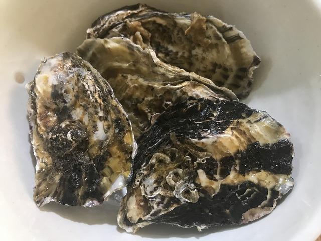 虫明の牡蠣